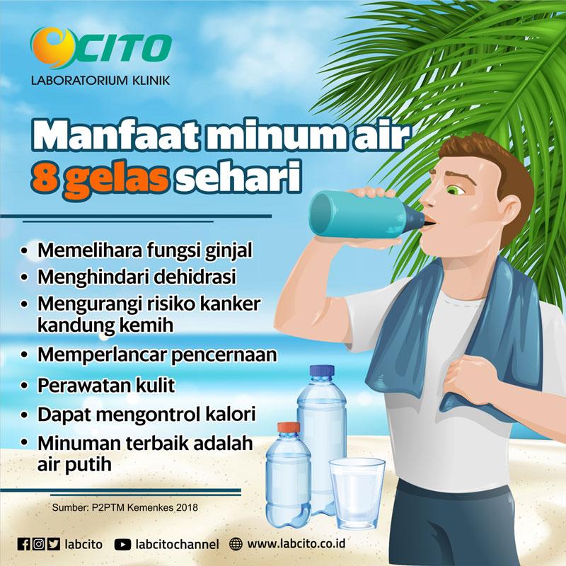 Manfaat Minum Air 8 Gelas Perhari Untuk Kesehatan Laboratorium Klinik Cito