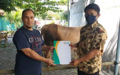 Program CSR Hewan Kurban Idul Adha 1440 H Oleh Laboratorium Klinik CITO