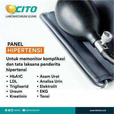 panel hipertensi