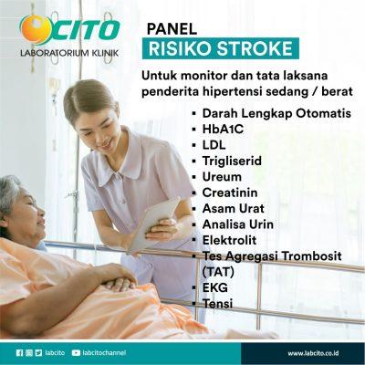 panel risiko stroke