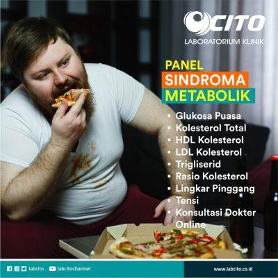 panel sindroma metabolik