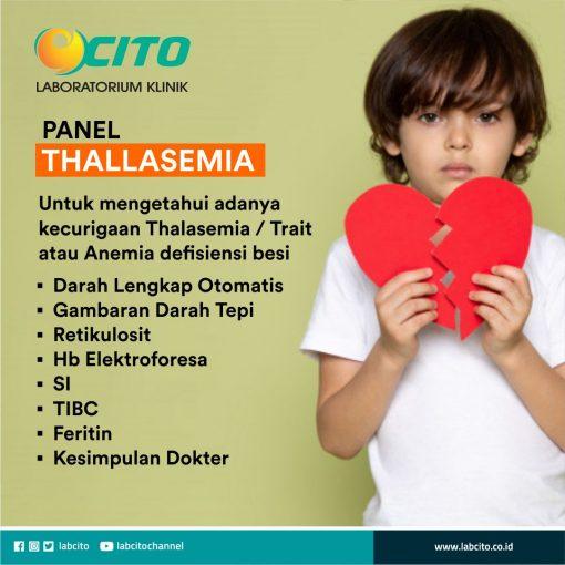 panel thalasemia