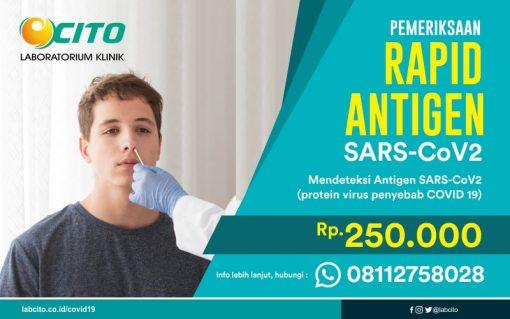 rapid-antigen-covid-19